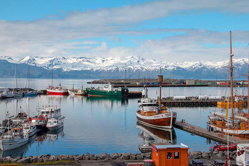 Education in Iceland for Indian students